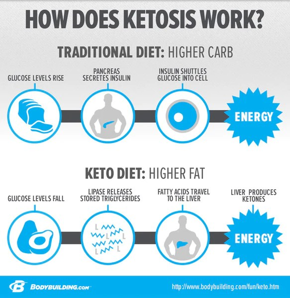 Vegetarian keto diet meal plan also the ultimate day food list ketolabs rh