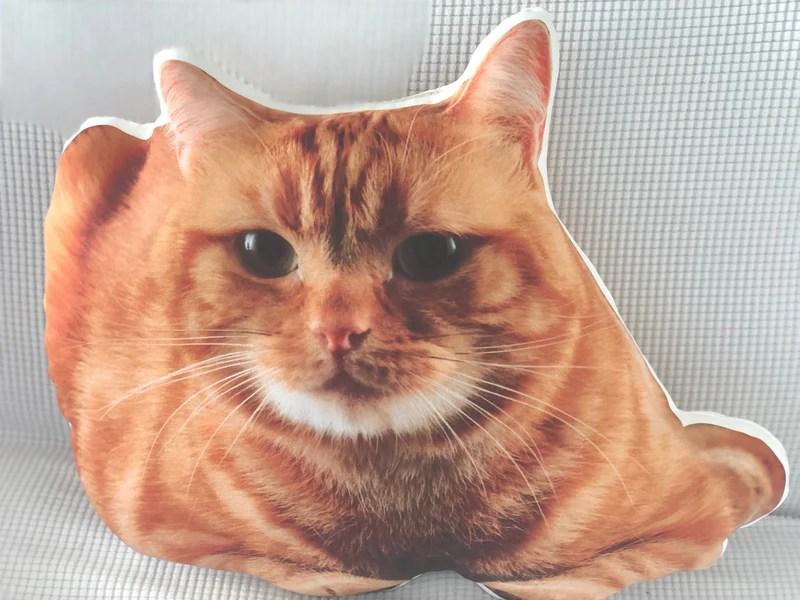 create a custom cat pillow