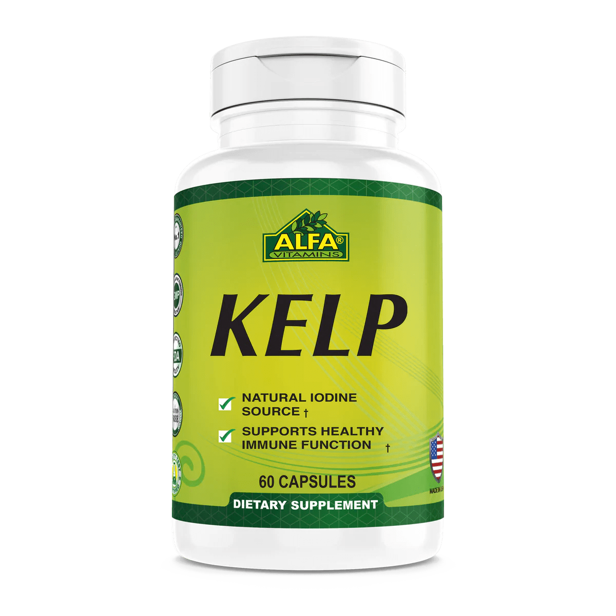 Kelp Supplement / Iodine Source / Weight Loss Support ...
