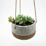Hanging Succulent Planter David Shopkit