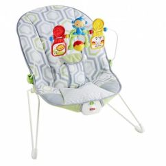 Infant Bouncy Chair Office Covers Amazon Seat Rental Yellow Turtle Baby Gear Rentals