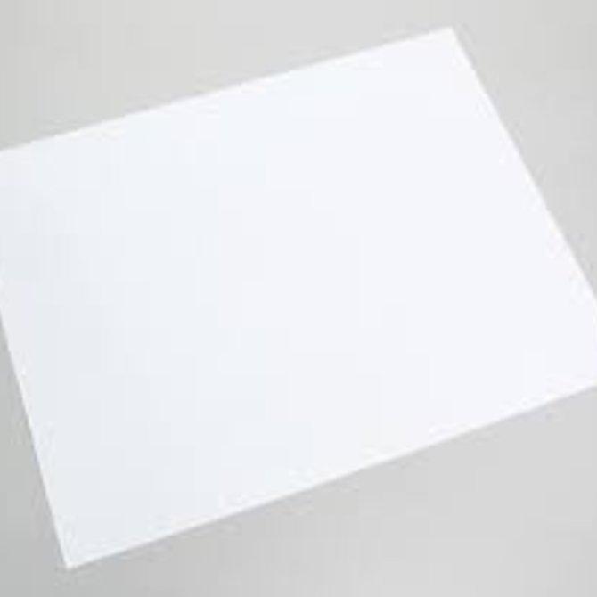 white poster board 22 x 28