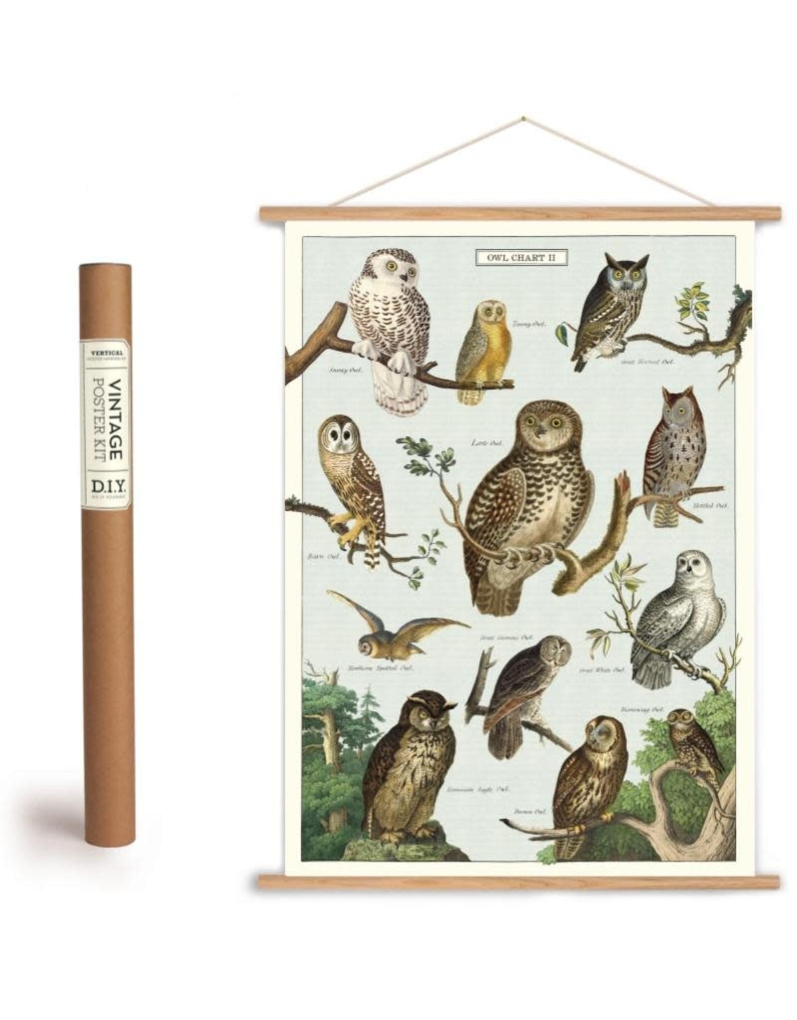 cavallini vintage poster kit owls
