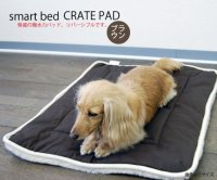 Dog Gone Smart Bed DGSCPS1903 Cotton Dog Crate Pad with ...