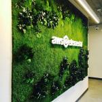 8 Benefits Of Plant Walls For The Office Space Office Plant Wall