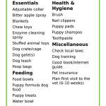 Henlo Fren New Puppy Checklist For Your Pupper Listonic