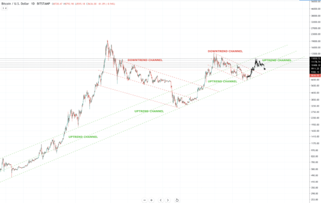 bitcoin price echo bubble fractal