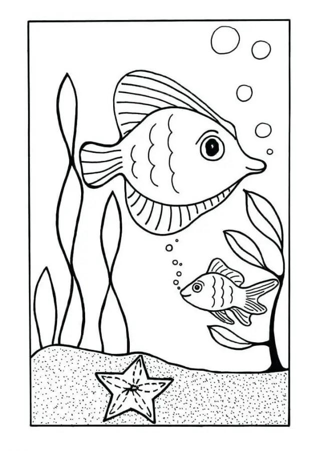 Gambar Kolase Ikan : gambar, kolase, Mewarnai, Kolase, Gratis, Terbaik, Kumpulan, Gambar