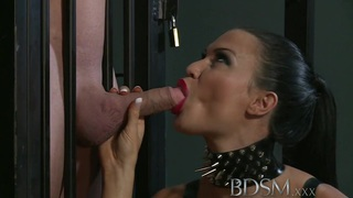 BDSM XXX Subs are_humiliated before anal image