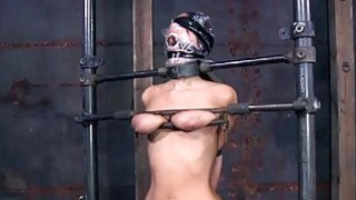 Hotty in latex suit gets fur pie and anal prodding image