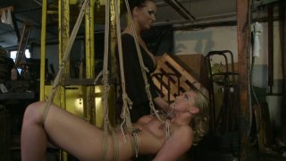 Kinky Kathia Nobili and Mandy Bright are acting dirty in a BDSM video image