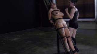 Ugly bitch Rain DeGrey is starring in a hardcore BDSM video getting her nipples squeezed badly image