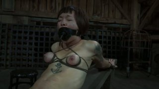 Freaky Asian slut Mei Mara is tied up and tormented with a dildo image