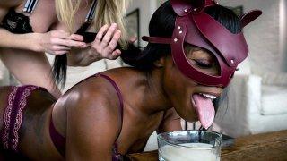 Blonde keeps Ebony BDSM Sex-Goddess Ana as_Cat! image