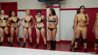 Round 2 Tag Finale. Darling and Bella vs. Daisy Ducati and Penny image