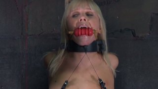 Image: All bounded girlie Sarah Jane Ceylon gets her nipples and pussy pinned