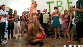 Another dorm taken over by BangBros classy sluts image