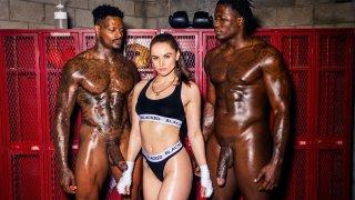Pro Black Boxers Tagteam Tori_Black image