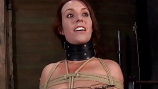 Image: Gagged cutie with clamped nipples receives fun