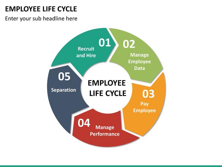 employee life cycle diagram 2002 ford taurus car radio stereo wiring lifecycle powerpoint template | sketchbubble