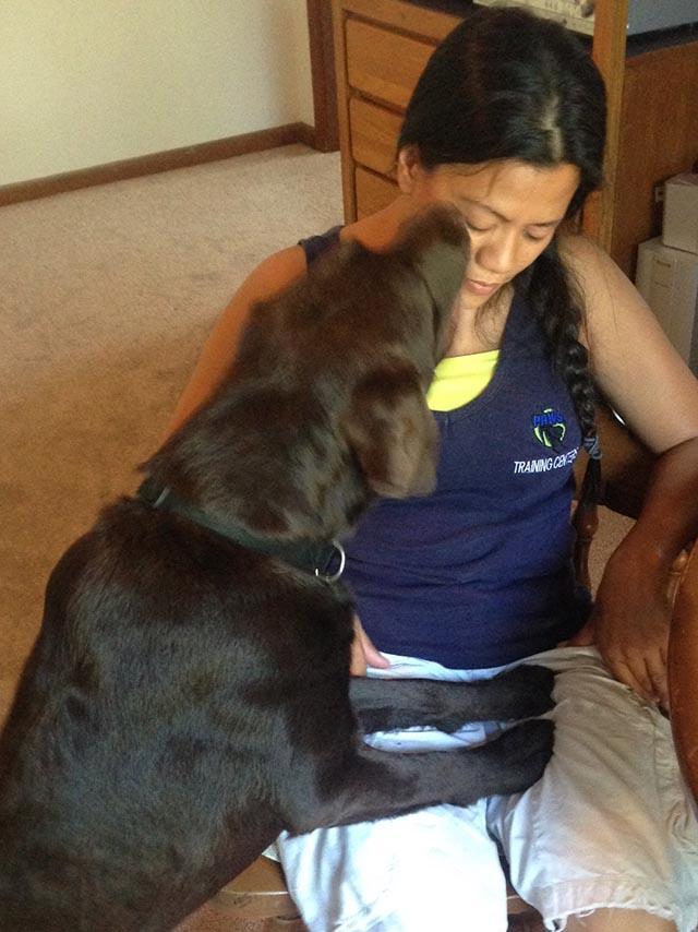 service dogs support narcolepsy