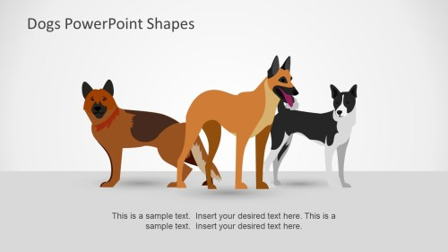 small resolution of dog breed brown german shepard