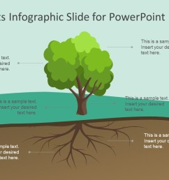 tree roots infographic slide for powerpoint slidemodel tree diagram root cause analysis infographic powerpoint label [ 1280 x 720 Pixel ]