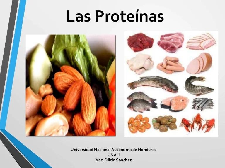 07 proteinas