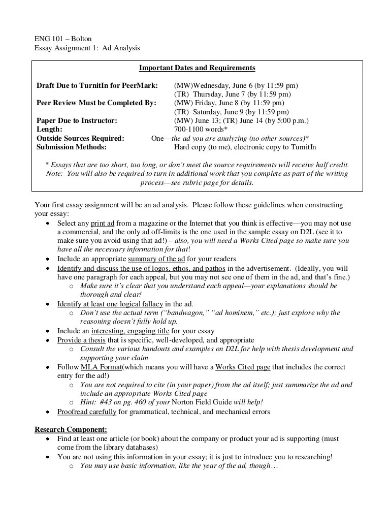 Advertising Essay Examples Ads Essay Advertisement Analysis Essay