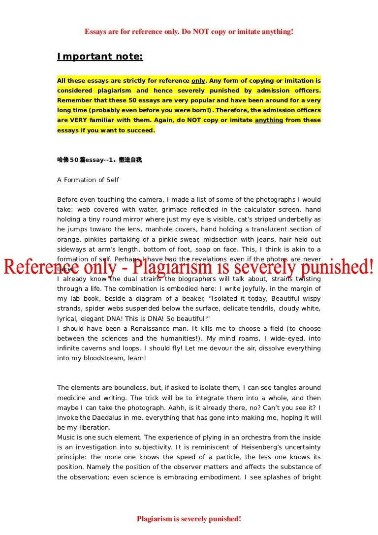 example college application essay
