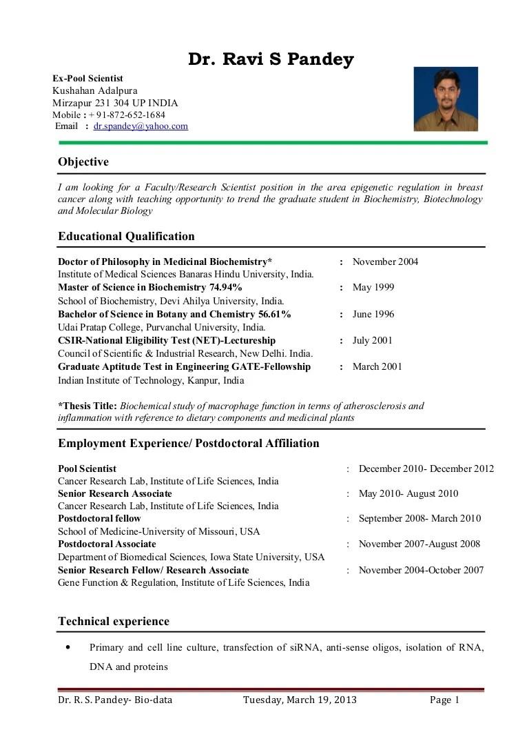 teacher resume profile sample