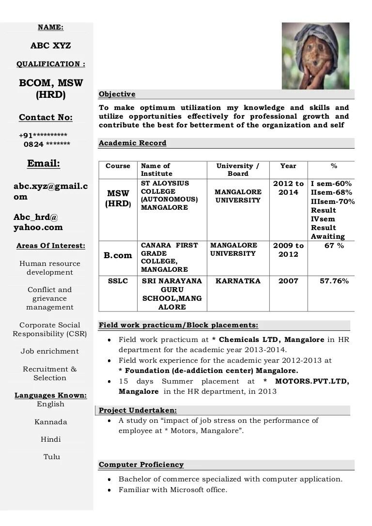 Freshers CV Format 2