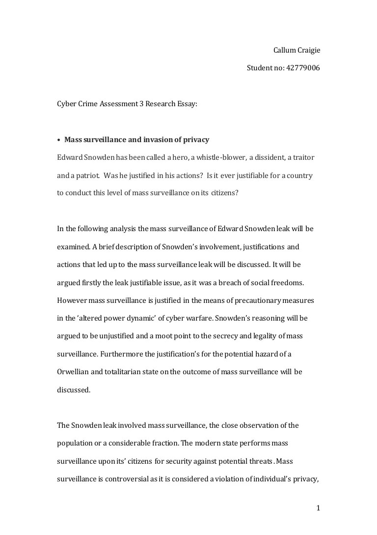 Cyber Terrorism Essay Essay On Cyber Crime Annie Russell