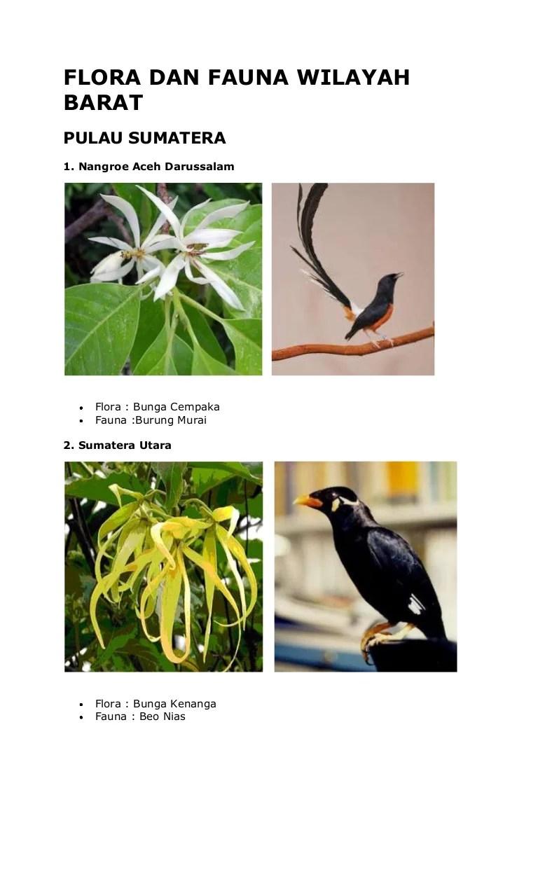 Fauna Bagian Barat Dan Penjelasannya : fauna, bagian, barat, penjelasannya, Flora, Fauna, Wilayah, Barat