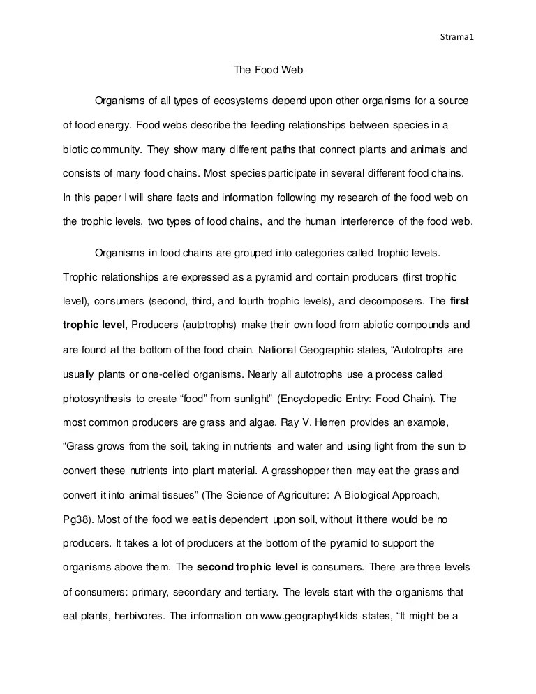 Food Web Research Paper