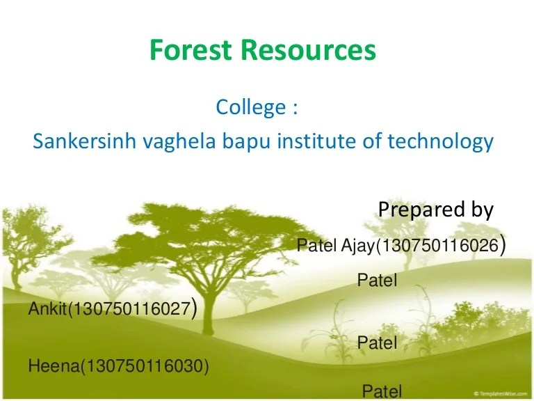 There's a good explanation for this crazy. Forest Resources
