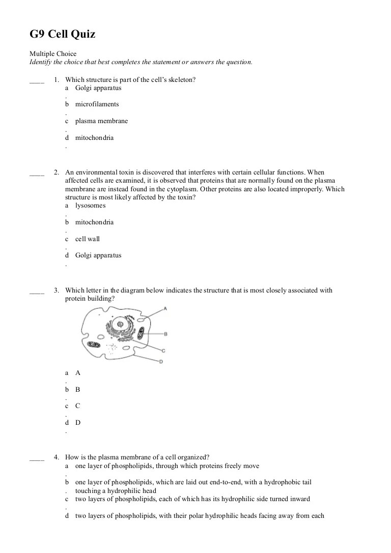 hight resolution of part of the cell diagram quiz