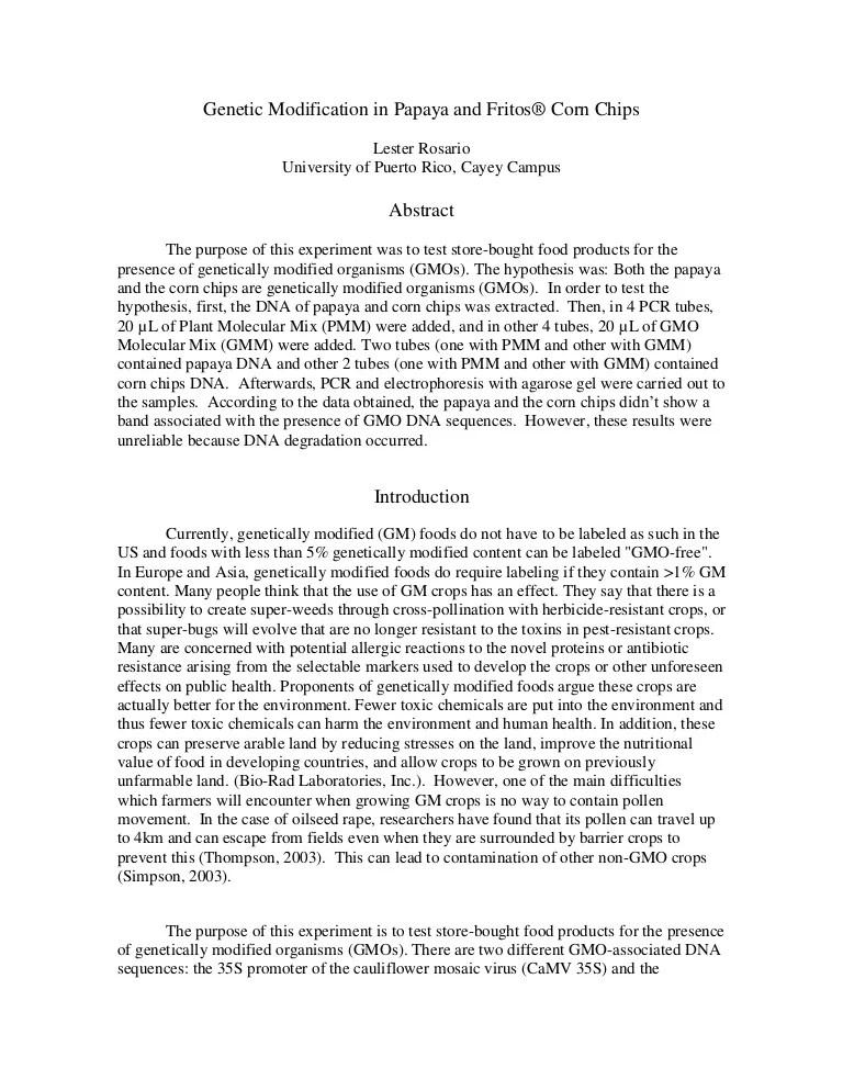 Gm Foods Essay Gmo Essay Persuasive Essay Gmo S Essay On Hate Crimes