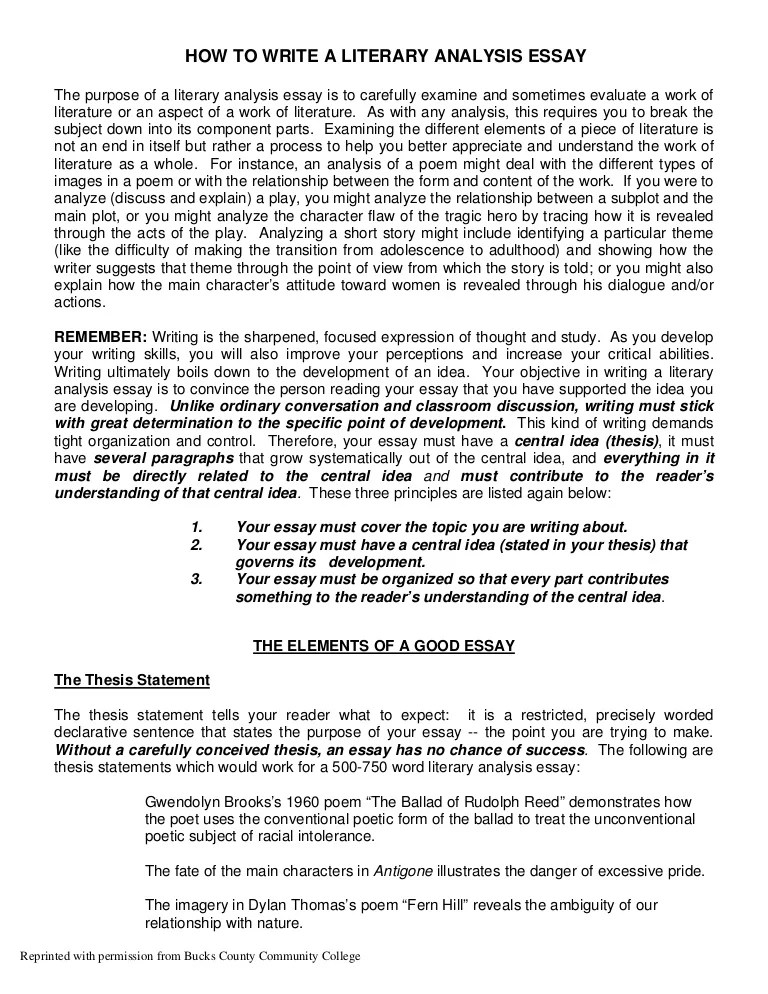 Literary Essay Examples Literary Analysis Response To Literature