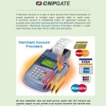 Cnp Gate Merchant Account Service Provider