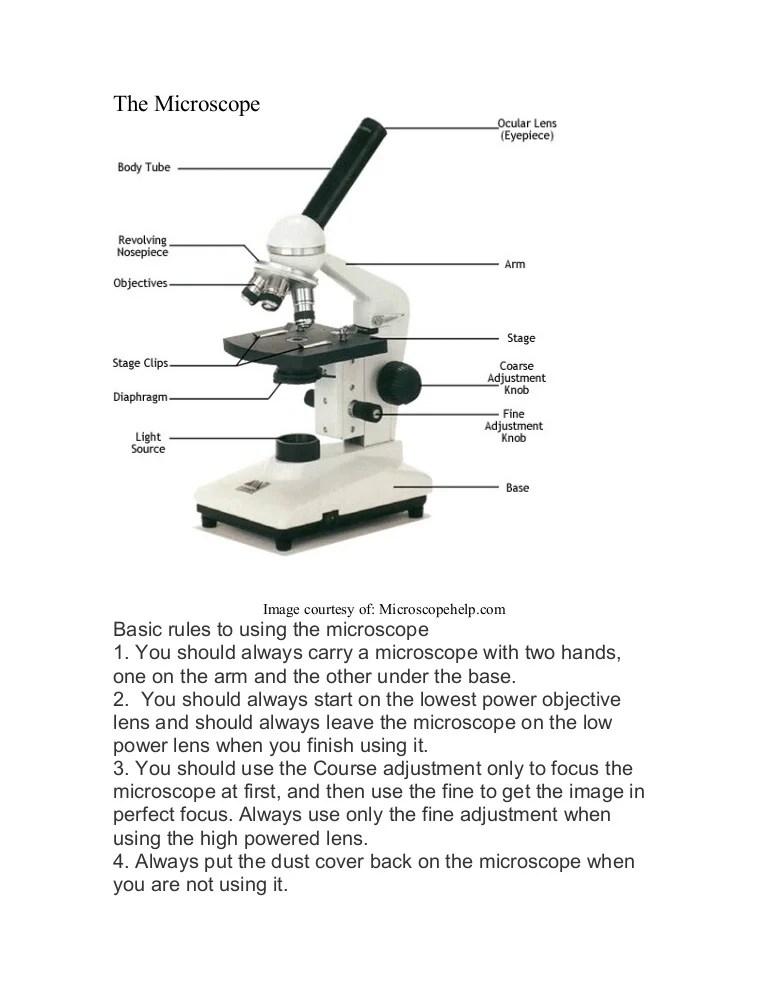 Microscope labeled diagram