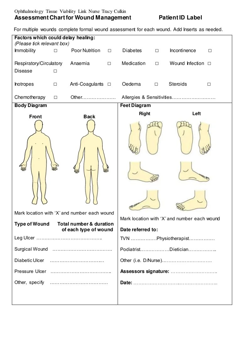 hight resolution of wound assessment diagram