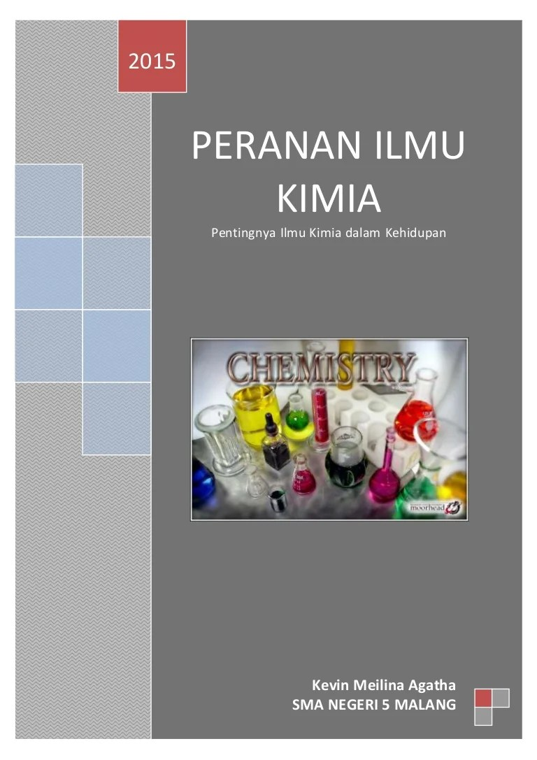 Peranan Kimia Dalam Kehidupan : peranan, kimia, dalam, kehidupan, Peran, Kimia, KIMIA