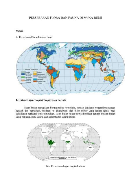 Persebaran Fauna Paleartik : persebaran, fauna, paleartik, Persebaran, Flora, Fauna