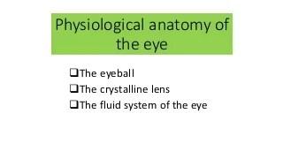 'anatomy of eye' on SlideShare