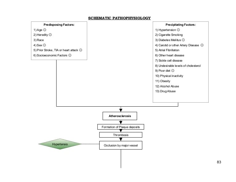 Schematic Pathophysiology Cva