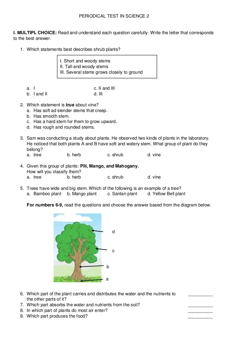 hight resolution of Periodical Test in Science 2