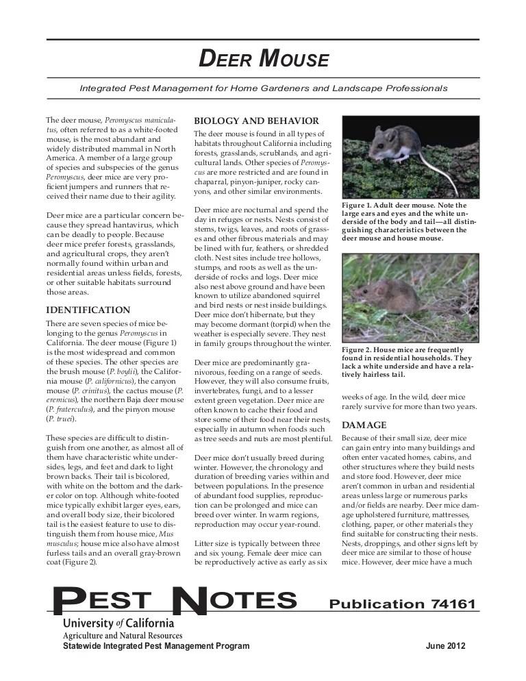 Deer Mouse Integrated Pest Management