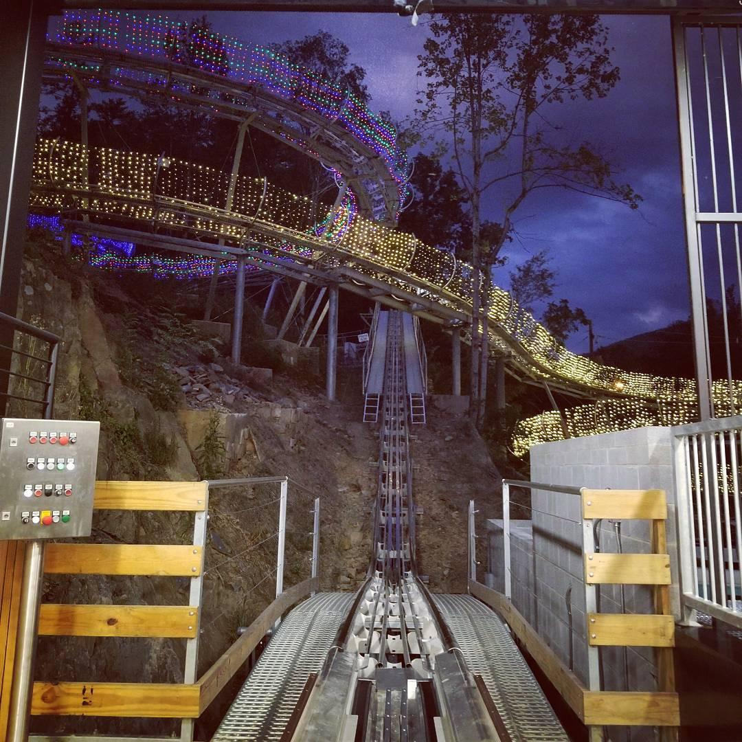 Review of Rowdy Bear Mountain Coaster in Gatlinburg