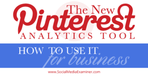 The New PInterest Analytics Tool for Business from Kim Vij